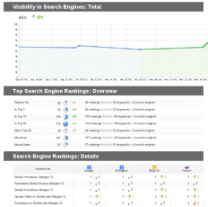 SEO reports from Thrive