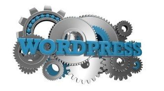 Hire Our Professional WordPress Website Designers