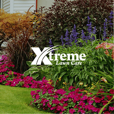 Web Design For Xtreme Lawn Care